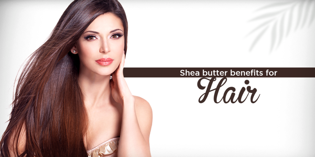 These are the best shea butter benefits for hair which will give your hair better shine and strength